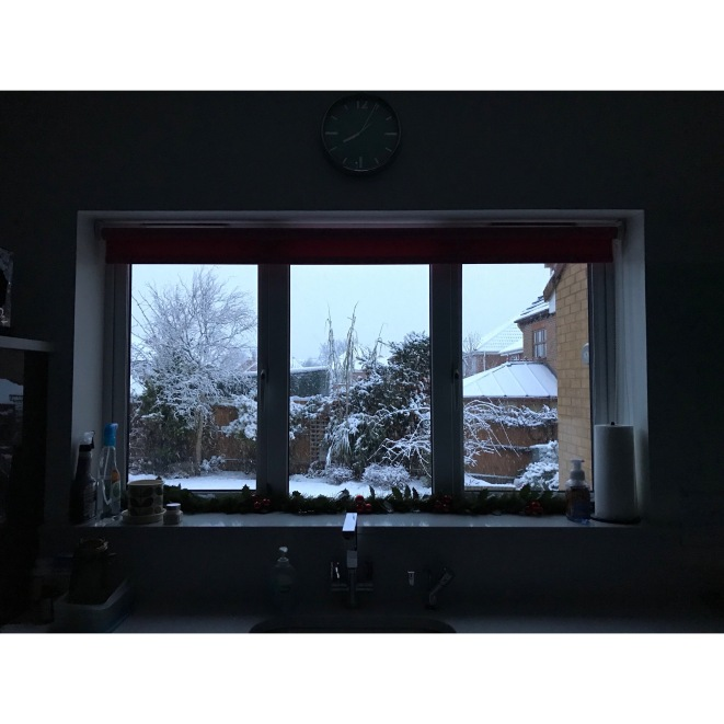 a snowy scene from the kitchen window